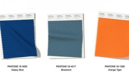 Pantone 2020 sonbahar/kış renkleri