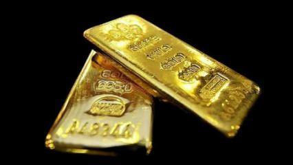 Altına hücum ettiler! Günde 2 ton alıyorlar