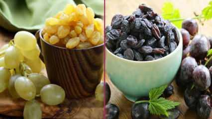 Üzüm nasıl kurutulur? Evde üzüm kurusu nasıl yapılır, evde üzüm kurutmanın püf noktaları