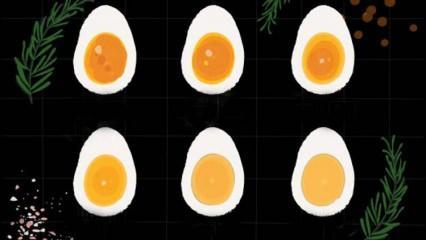 Yumurta nasıl haşlanır? Yumurta haşlama süreleri! Rafadan yumurta kaç dakika kaynar?