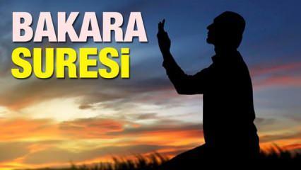 Bakara Suresi Arapça ve Türkçe okunuşu ! Bakara Suresi okumanın faziletleri ve meali...