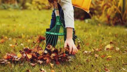 Sonbahar'da bahçe temizliği nasıl yapılır? Bahçe bakımı ve temizliği...