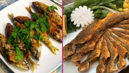 İstavrit balığı nasıl pişirilir? En kolay istavrit tava tarifi