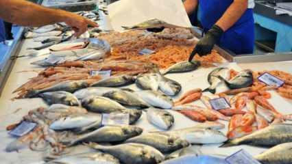Masterchef jürisi Mehmet şef'ten taze balık seçmenin püf noktaları