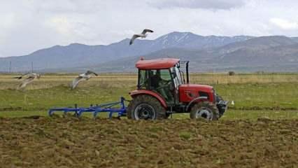 Çiftçilerin kullanımına sunulan Hazine'ye ait arazilerde hasat heyecanı