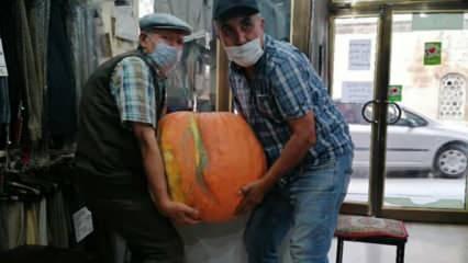 Tam 40 kiloluk bal kabağı! 300 liraya satışta