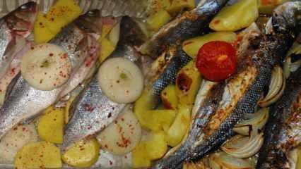 Levrek balığı nasıl pişirilir? Levrek balığıyla yapılan 4 kolay tarif