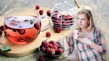 Doğumu kolaylaştıran çay: Ahududu! Ahududu çayının hamilelere faydası