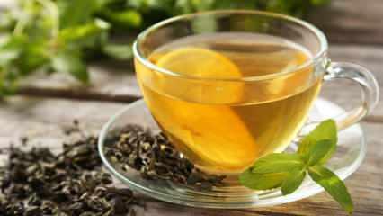 Yeşil çay nasıl saklanır? Yeşil çayı saklamanın püf noktaları