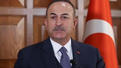Dışişleri Bakanı Çavuşoğlu, Belçikalı mevkidaşı Wilmes'le görüştü