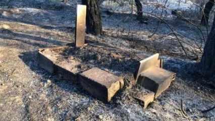 Hatay'daki orman yangınında mezarlıklar da zarar gördü