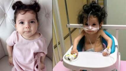 SMA hastası minik Öykü'nün tedavisi için 47 gün kaldı!