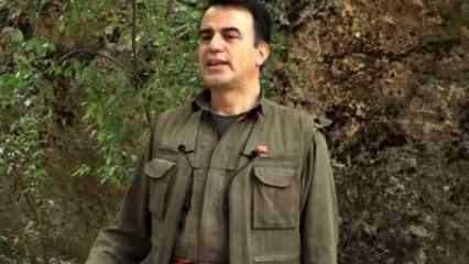 Tükenen PKK'da Selahattin Demirtaş'ın terörist kardeşinden çağrı geldi