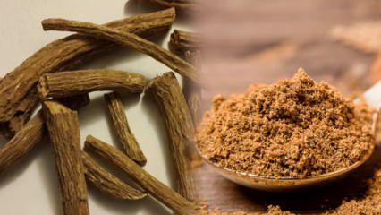 En güçlü ve doğal antibiyotik: Udi Hindinin faydaları nelerdir? Udi Hindi nasıl tüketilir?