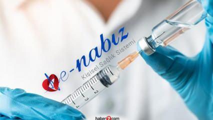 Grip aşısı kimlere yapılacak? e-Nabız grip aşısı sorgulama!