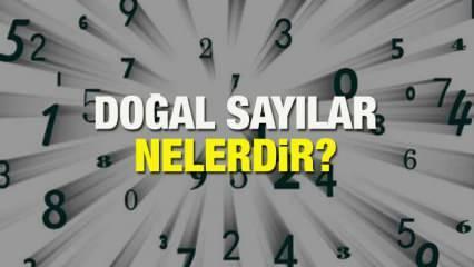Doğal sayılar nelerdir?  Doğal sayılar nasıl bulunur, hangi sayılar doğal sayıdır?