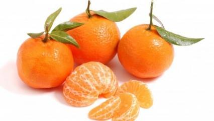 Her gün 5 mandalina tüketmenin hiç bilmediğiniz faydaları