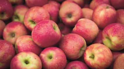 Rüyada elma bahçesi görmek neye işaret? Rüyada çürük elma yemek hayırlı mıdır?