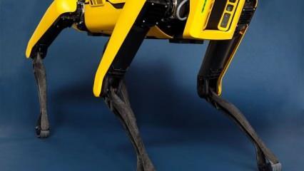 Boston Dynamics yaklaşık 1 milyar dolara Hyundai'ye satıldı