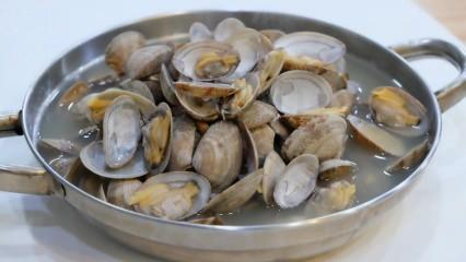 Deniz tarağı nasıl temizlenir? Evde deniz tarağı nasıl yapılır? Deniz tarağı faydaları