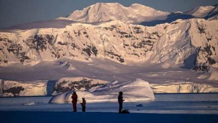 İlk vaka! Koronavirüs Antarktika'ya da sıçradı