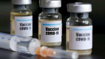 Mutasyon geçiren koronavirüs aşıdan etkilenecek mi?