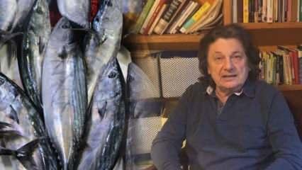Ünlü gurme Vedat Milor yaşadıklarını anlattı: Deniz ürünlerindeki büyük tehlike!