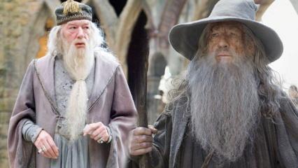 Yüzüklerin Efendisi'ndeki Gandalf ile Harry Potter'deki Albus Dumbledore aynı kişi mi?