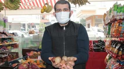 Vatandaşın yüzünü güldüren kampanya! 'Avokado çekirdeğini getir, istediğini götür'