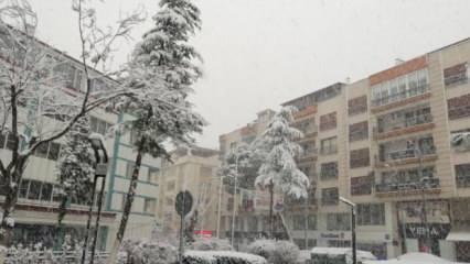 3 yıl aradan sonra kar yağdı! Şehir beyaza büründü