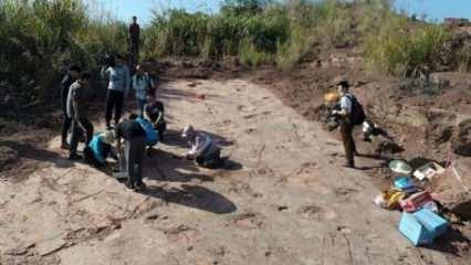 Bilim insanları Çin'in doğusunda 240'tan fazla dinozor ayak izi keşfetti