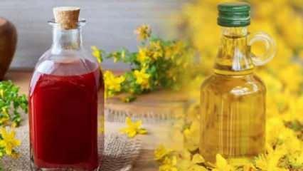 Kantaron yağının faydaları nelerdir? Kırmızı ve sarı kantaron yağı nasıl kullanılır?