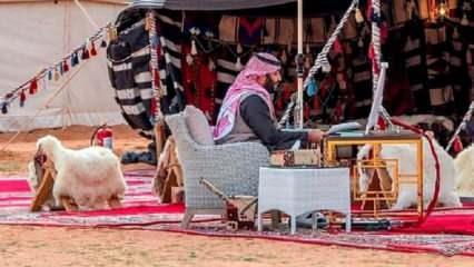 Suudi Arabistan Veliaht Prensi, Davos'a çölden katıldı