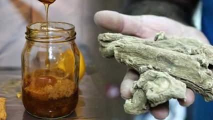 Udi hindi yağı faydaları nelerdir? Udi hindi yağı covid-19'a karşı nasıl kullanılır?