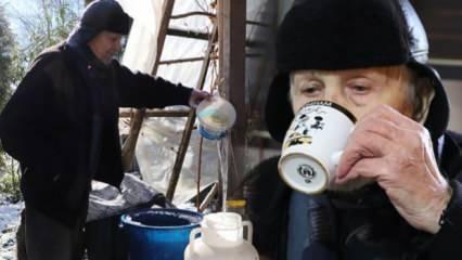 90'lık çınar uzun yaşamın sırrını anlattı: Yaz kış kar suyu içiyorum!