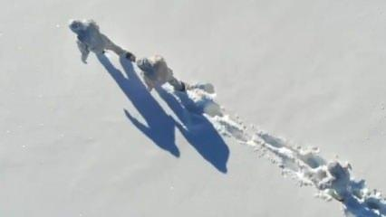 Bakan Koca paylaştı: 1,5 metre kar, eksi 15 derecede...