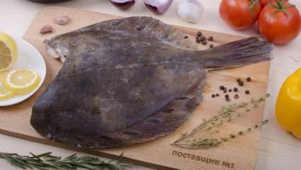 Kalkan balığı nasıl temizlenir? Kalkan balığının temizlemenin püf noktaları