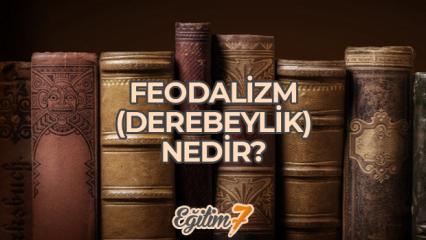 Feodalizm (Derebeylik) Nedir? Feodalizmin olumlu ve olumsuz yönleri neler?