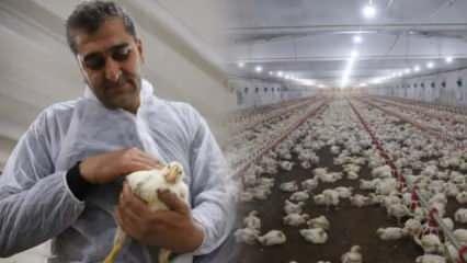 İnşaat işçisiyken işsiz kaldı, devletten aldığı destekle çiftlik sahibi oldu