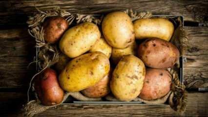 Patatesin çürüdüğü nasıl anlaşılır? Patatesin çürümesi nasıl engellenir