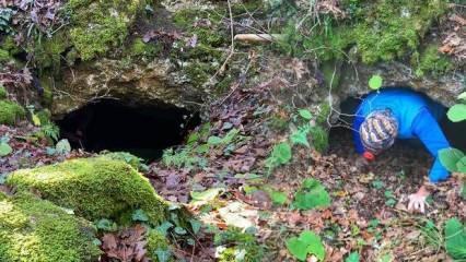 Bursa'da koyun otlatan çoban 2 galeriden oluşan esrarengiz bir mağara keşfetti