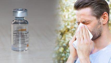 Alerjisi olanlar dikkat! Koronavirüs aşısı olmadan önce dikkat etmeniz gerekenler...