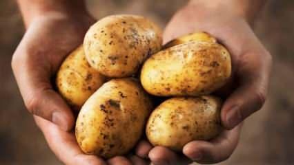 Göz ağrısına patates iyi gelir mi? Gözün üzerine patates koymak...