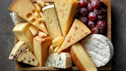 Peynir nasıl saklanır? Peynir buzdolabına nasıl koyulmalı? Peynir kokusu