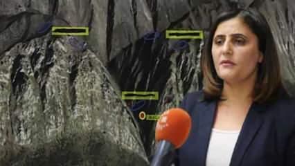 HDP'li vekili Gara'da gördüğünü söyleyen teröristin ifadesi ortaya çıktı