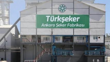 Ankara Şeker Fabrikasından rekor üretim
