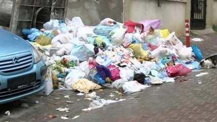 İstanbul Maltepe sokaklarında çöp dağları yükselmeye başladı!