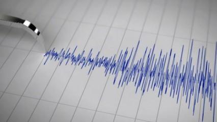 Muş'un Varto ilçesinde korkutan deprem