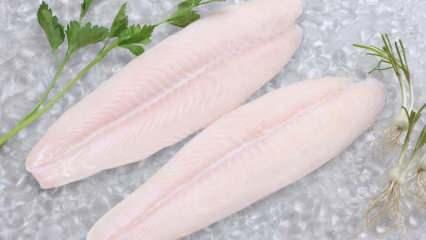 Panga balığı nedir? Panga balığı nasıl pişirilir? Fırında panga balığı tarifi