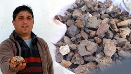 Tokatlı çobanın başına talih kuşu kondu! Koyununun ayağına takılan taş 200 bin dolara satılıyor